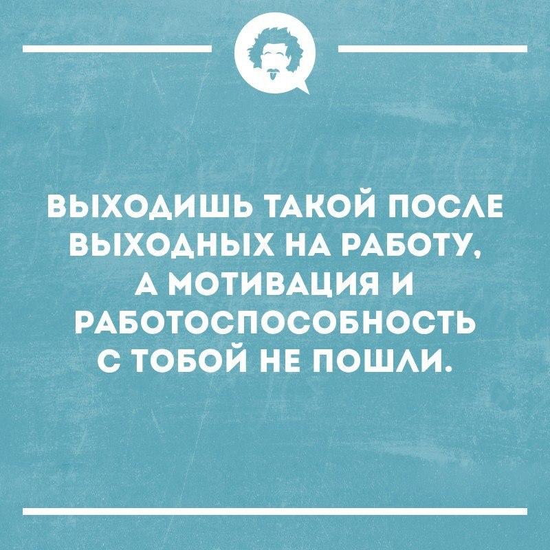 https://pp.userapi.com/c543107/v543107408/3fdc0/vTJZvGVm3yc.jpg
