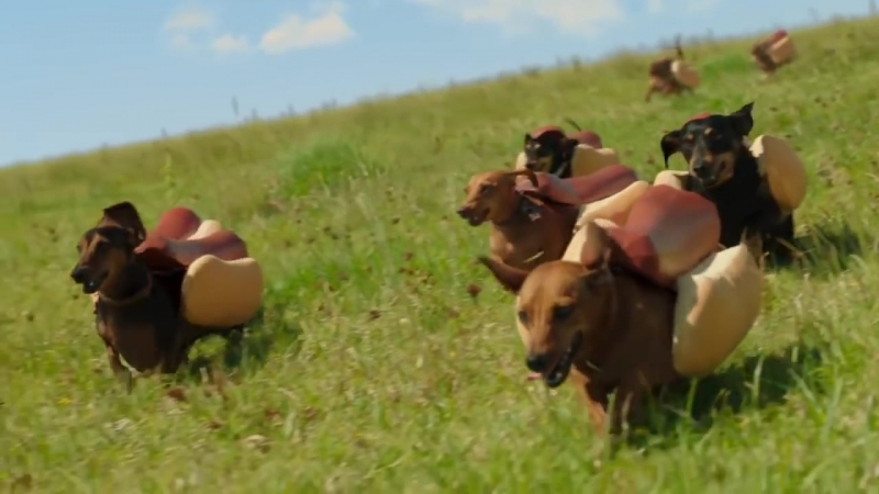 HEINZ Ketchup 2016 Hot Dog Commercial the Wiener Stampede