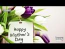 Сьогодні в Україні відзначають День матері