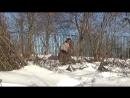 КЛАССИКА ИЛИ ПОВОРОТКА Что лучше для снега и сугробов