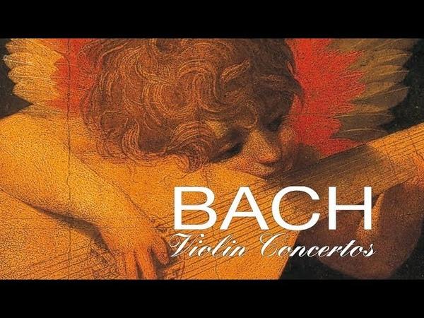 J.S. Bach The Violin Concertos