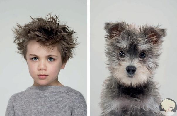 Собаки и их люди – фотопроект об удивительном сходстве питомцев и их владельцев