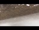 Живые рыбы в вечной мерзлоте на высоте 5400м