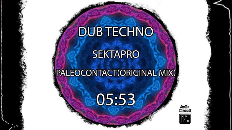 Dub techno : SektaPro - paleocontact (original mix)