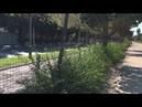 ИССЛЕДУЯ РАЙОНЫ ВАЛЕНСИИ - САНТ ПАУ (Sant Pau) ВАЛЕНСИЯ (Valencia). Ежедневные влоги!