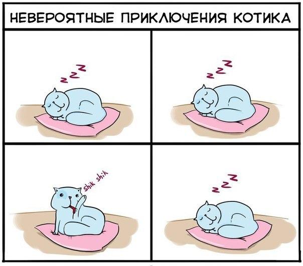 http://cs408429.vk.me/v408429306/5f26/YlVM3iVgzRo.jpg