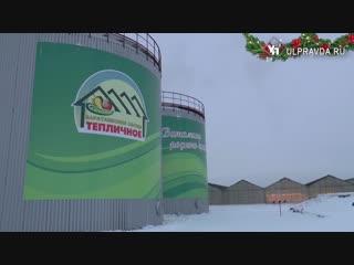 Овощи под защитой http://ulpravda.ru