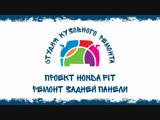 Кузовной ремонт Новосибирск. Honda Fit. SKR154
