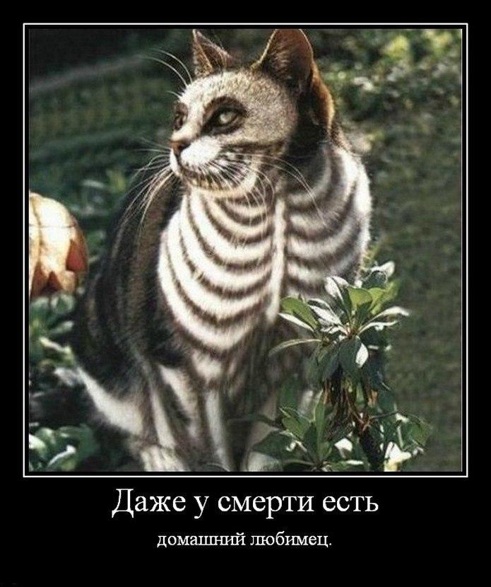 Было никакого откровенные фото девушек из москвы пока будь осторожен