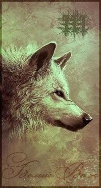Белый Волк, 25 июня , Киев, id32327201