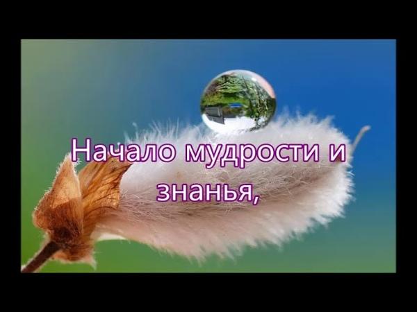 Душа хвалу Тебе поёт - Песня Хвала