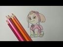 Как нарисовать Скай ЩЕНЯЧИЙ ПАТРУЛЬ / speed drawing Sky paw patrol
