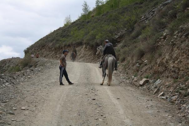 Алтаец с Алтайцем встретились. Кажется, они в Горно-Алтайске вместе учились.