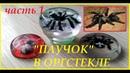 Паук в оргстекле Изготовление Часть1 Spider in plexiglas Manufacturing Part 1