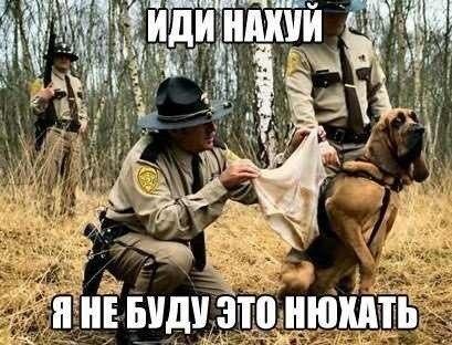 http://cs616619.vk.me/v616619296/1546f/fRdtlAMZelw.jpg