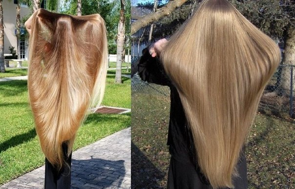 на сколько волосы отрастают за год