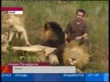 Репортаж 1 канала Мужчина в прайде львов
