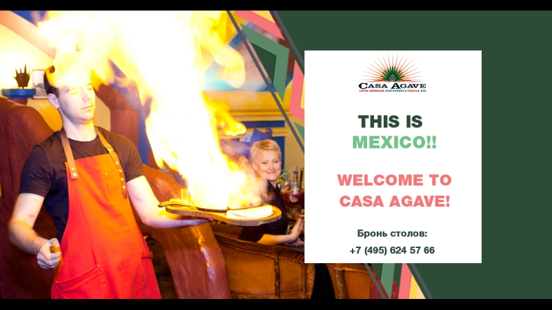 Welcome to casa agave