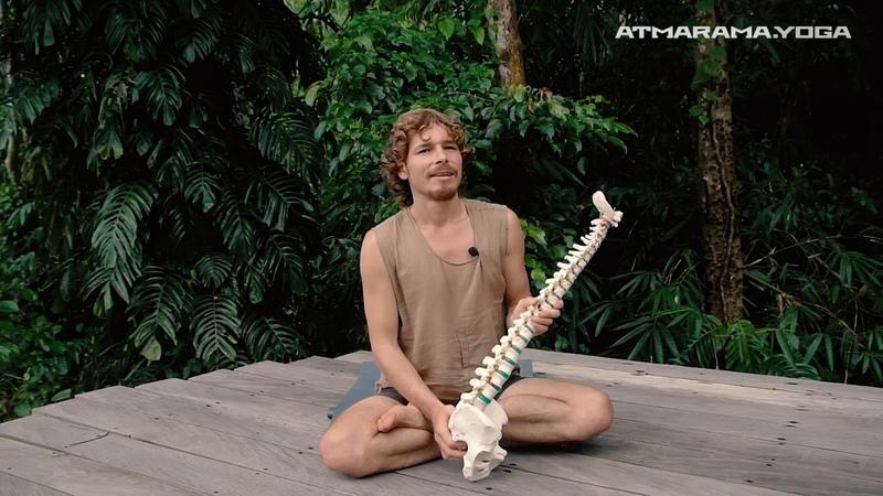 Суть подхода атмарама йоги тест на состояние вашего таза