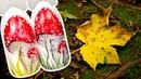 🍄 Грибы в Осенней Траве 🍄 Осенний Дизайн Гель лаком Мухомор Осенний Маникюр Пошаговый МК