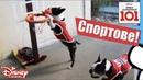 🎾 Спортове - Животни срещу хора   Улица Далматинци 101   Disney Channel Bulgaria