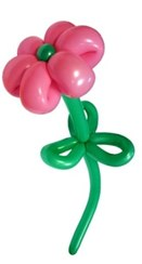Мастер-класс по оформлению воздушными шарами, цветы из шариков