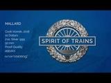 The Mallard - Spirit of Trains - CIT 28540