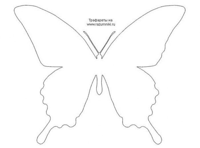 Трафарет бабочки из бумаги на стену своими руками