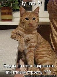 Eva Raider, 4 января 1990, Москва, id151883254