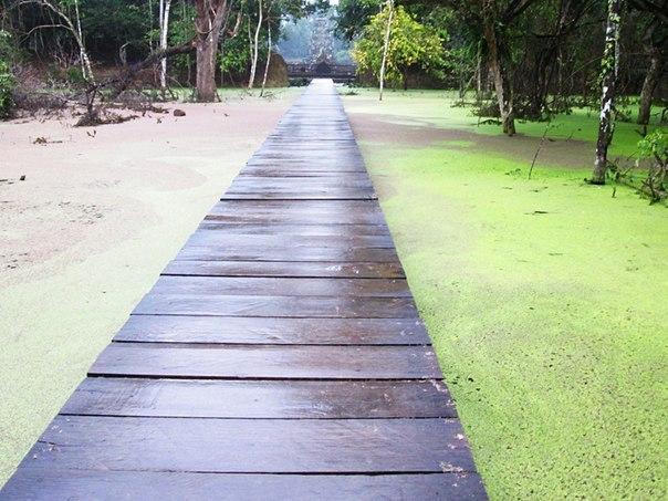 Наш загадочный Ангкор DgP2pulkyeg