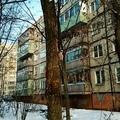 Дятел в Рыбинске долбит старый ствол)