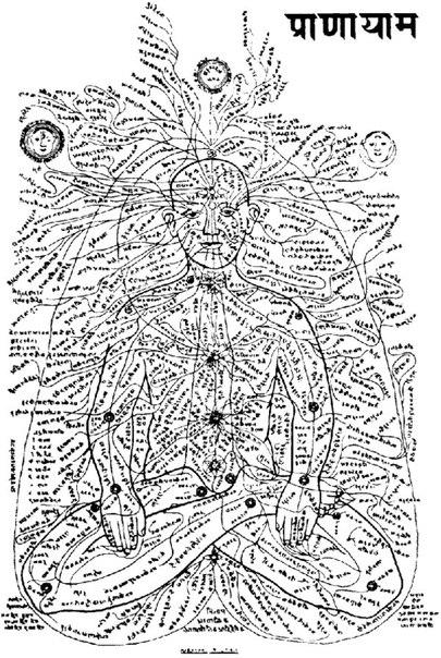Вся тонкая информация в теле