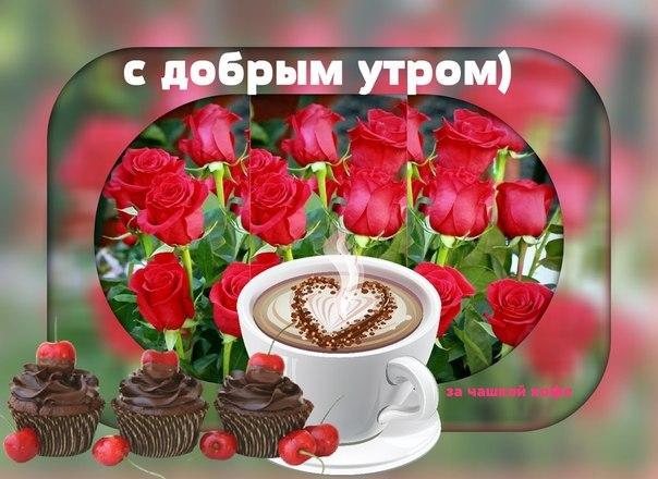 http://cs614920.vk.me/v614920549/1e3c1/issiqA0yg1I.jpg