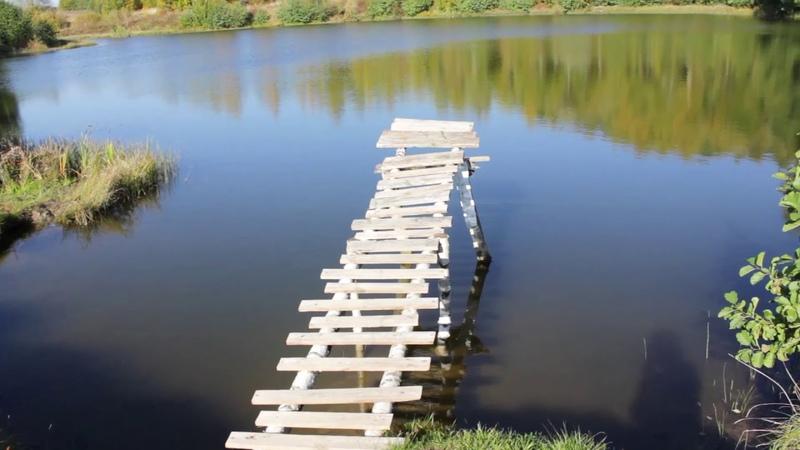 Красивая природа Беларуси, прогулка по тропинкам вдоль озера   Цены на дома и участки в деревне