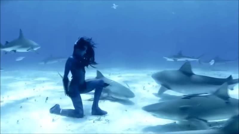 DreamLife Magic Ocean Original Mix