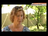 Страница 50. На Киевщине действуют летние лагеря для детей-беженцев с Донбасса - «Надзвичайні новини»: оперативна кримінальна хроніка, ДТП, вбивства