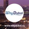 Why Dubai- Недвижимость в Дубае