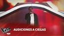 Felipe Andant Sé que ya no volverás Diego Torres Audiciones a ciegas La Voz Argentina 2018