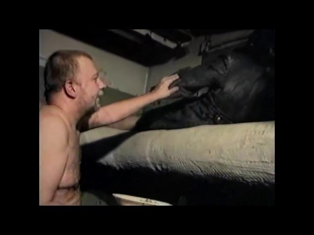 ЗС (Зеленый слоник) - Заебал блять