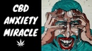 Will CBD Oil Help With Anxiety - Could CBD Be An Anxiety Miracle?