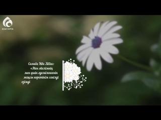 Әйел жүрегінің кілті / Ролик / Асыл арна