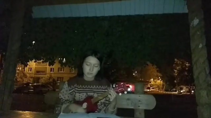 Z.O.L - Туда , где не знают меня (cover)