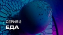 S7 Airlines Инопланетное шоу Посетите Землю 2 Серия Еда