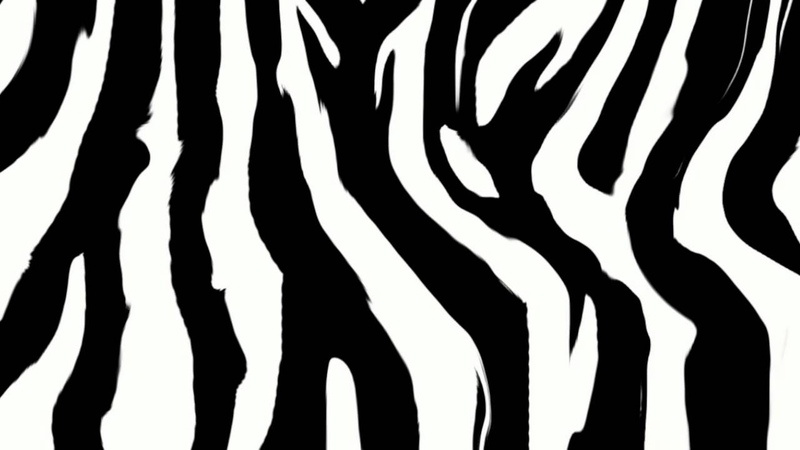 Zebrah (Original Mix) Juheun.mov