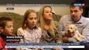 Новости на Россия 24 Путин подарил брянской школьнице щенка лабрадора