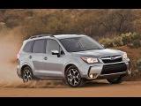 Тест драйв Субару Форестер (Subaru Forester AWD)