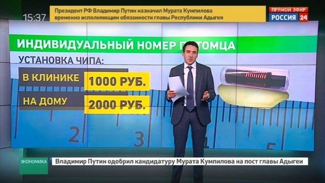 Новости на Россия 24 • Собакам, кошкам, рыбам и пчелам выдадут паспорта