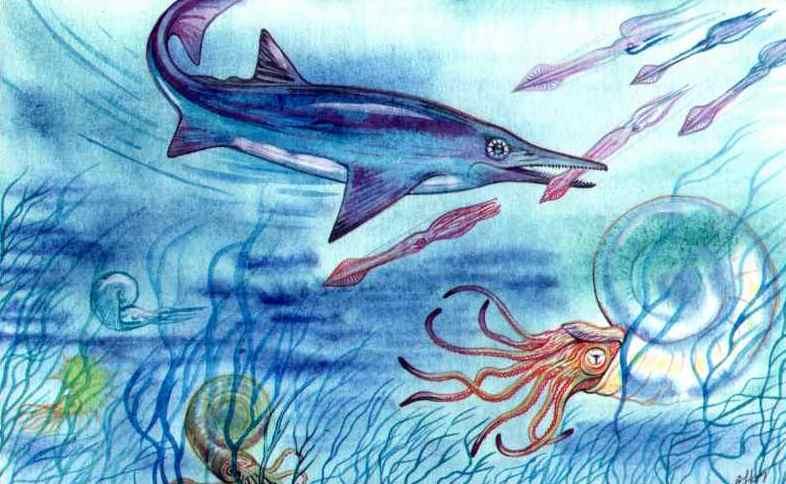 Море юрского периода: ихтиозавр, аммониты и белемниты