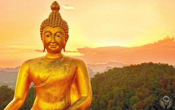 В ЧЁМ ЗАГАДКА «ПРИЧЁСКИ БУДДЫ» Одна из интереснейших личностей древности индийский принц Сиддхартха Гаутама, который впоследствии стал известен как Будда Шакьямуни, или просто Будда, основатель