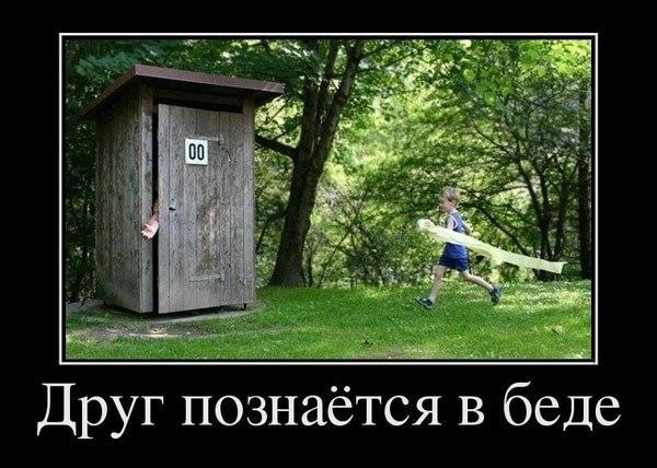 http://cs313118.vk.me/v313118459/4221/J6FWwZHZ8zE.jpg